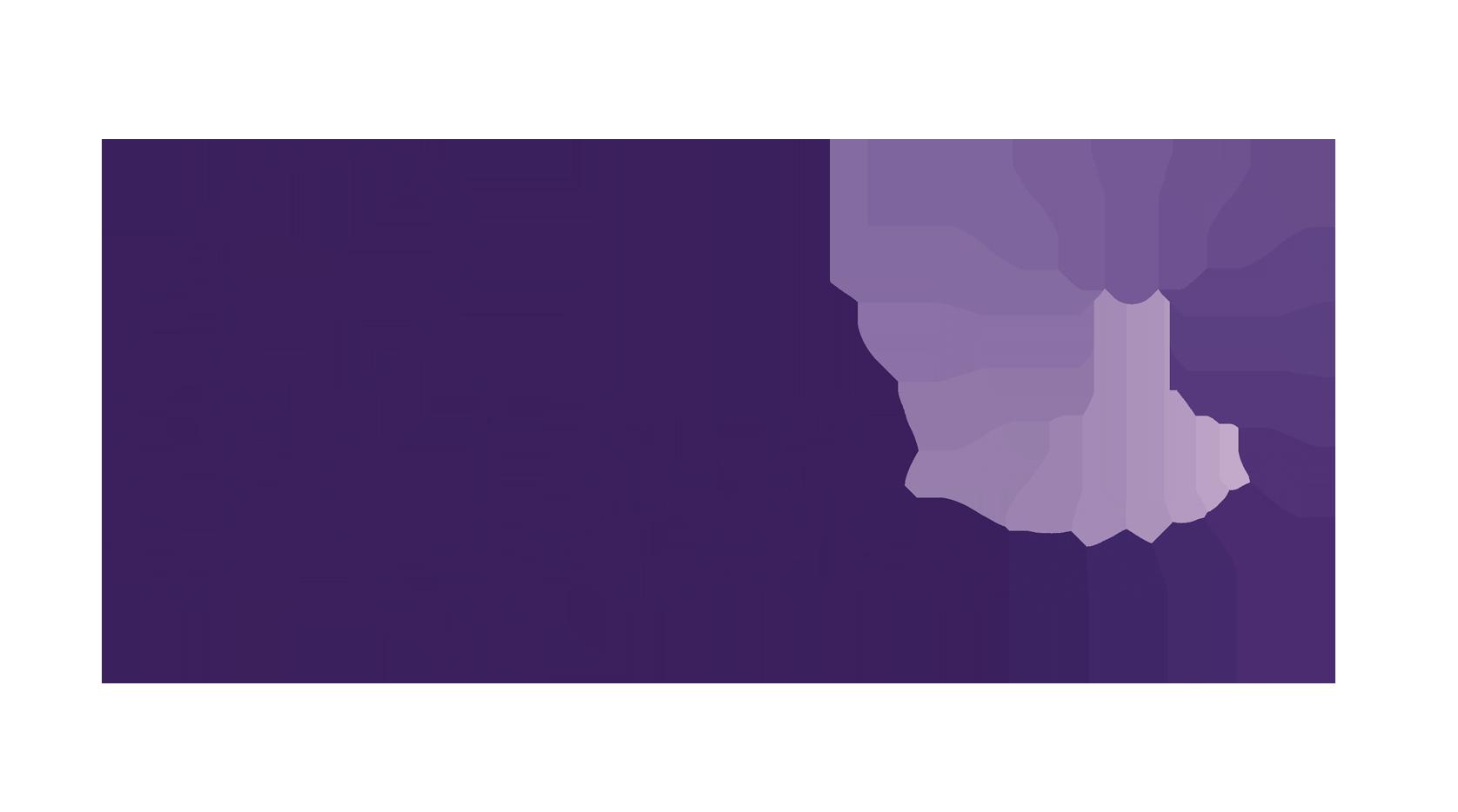 Rise Sverige